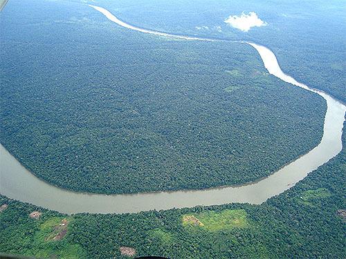 アマゾンは地球の酸素の20%を生産は誤り