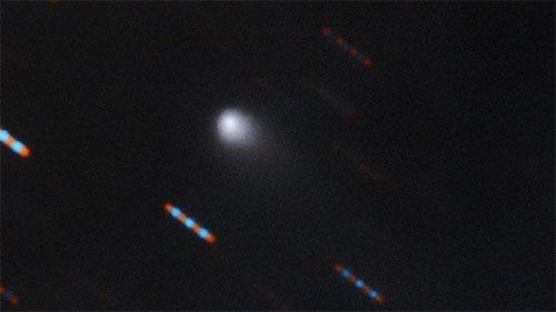 彗星型恒星間天体発見