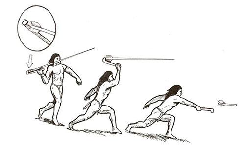 ネアンデルタール人は石器の違いで絶滅した
