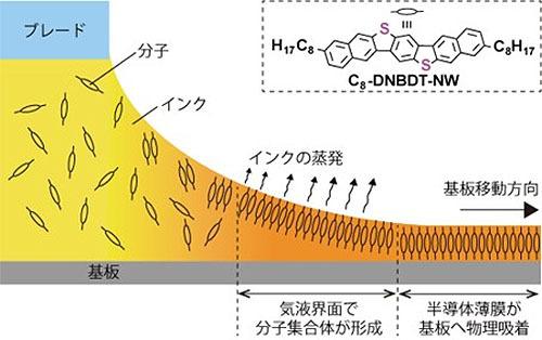 有機半導体分子の自動整列