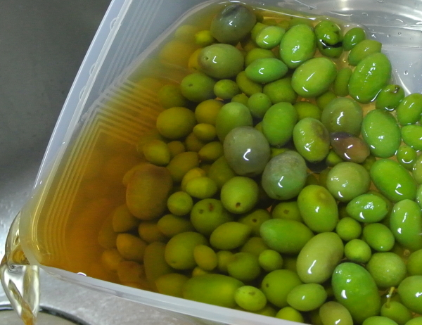 olive-1_20191011154209933.jpg