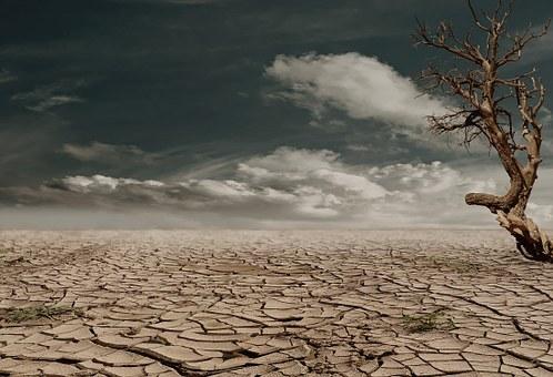 desert-279862__340.jpg