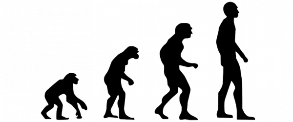 humanevolution-2780651__340.png