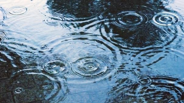 【梅雨】東京都心で昭和63年以来の記録的な日照不足!冷夏によって起きた1993年タイ米の米騒動が再来してしまうのか...