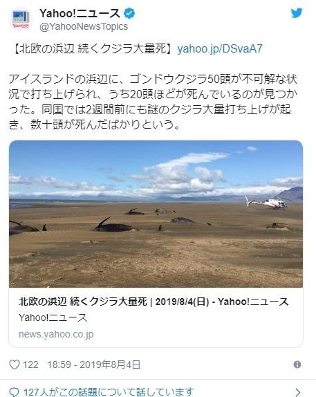 【謎の大量打ち上げ】またもアイスランドで「クジラ」20頭が打ち上げられる!