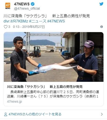 【地震前触れ】なぜか、川を泳いでいた深海魚の「サケガシラ」を発見…長崎では5月下旬頃にも「サケガシラとリュウグウノツカイ」が相次いで見つかっている模様