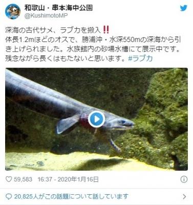 screenshot-03_50_01-1579373401758-758.jpg