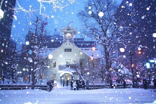 snow36875.jpg