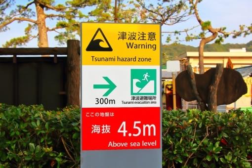 tsunami5786.jpg
