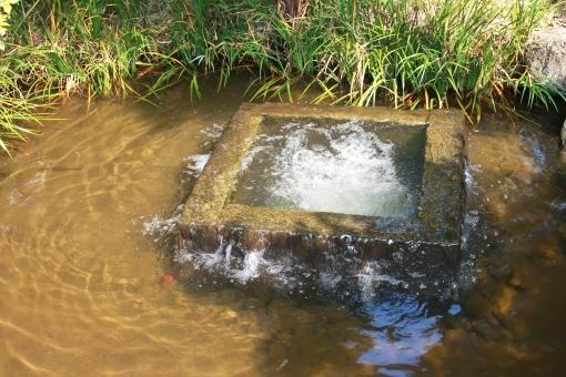 water387.jpg