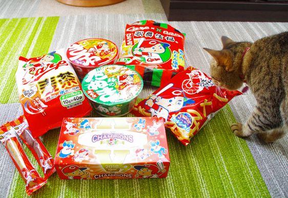 カープ猫③