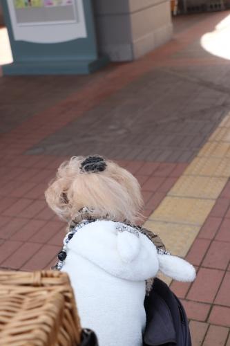道の駅大沢