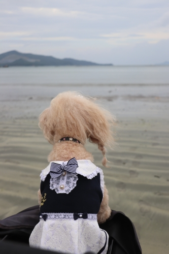 海の駅黒潮 黒潮パールロード店