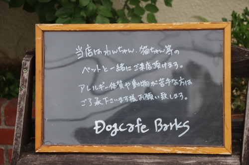Dog Cafe Barks