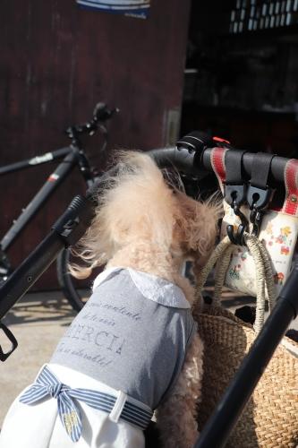 Bikers Cafe Circolo