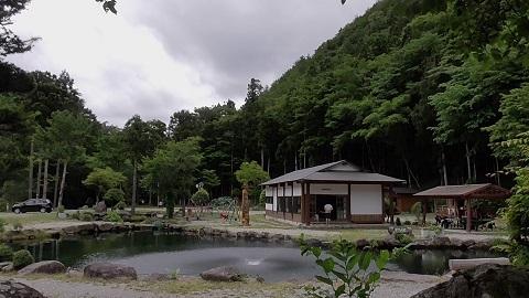 ナラ入沢-6