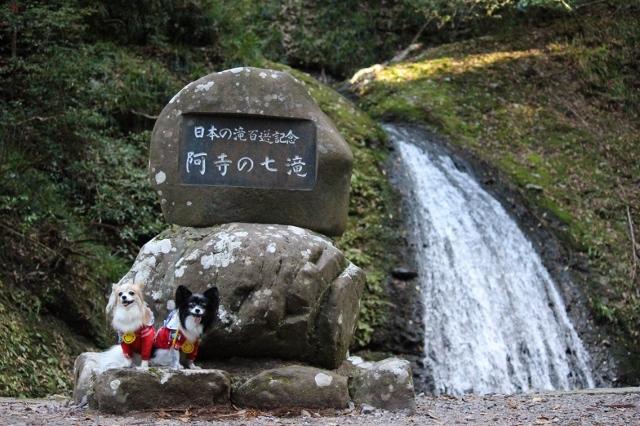 阿寺の七滝11月 (180) (640x426)
