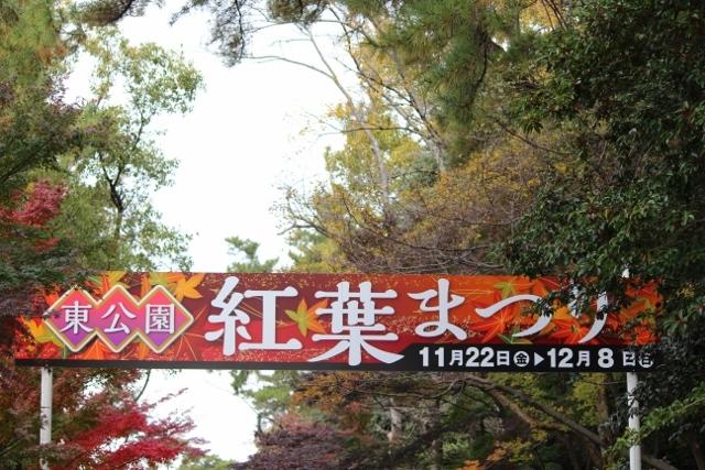 京都観光11月 (35) (640x427)