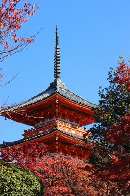 京都観光 (199) (426x640)