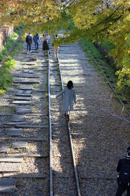 京都観光 (374) (427x640)