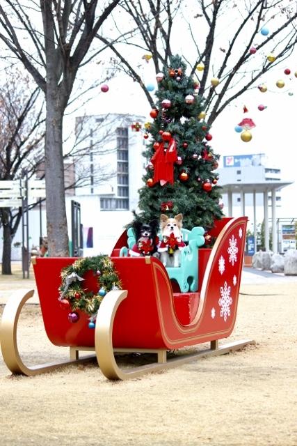 2019クリスマス (83) (427x640)