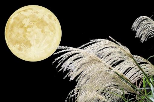 『花沢城物語~名月や  あぁ名月や  名月や~』空色様より