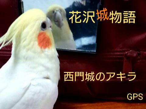 『花沢城物語~西門城のアキラ~』 byGPS