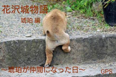 『花沢城物語・琥珀編~琥珀が仲間になった日~』 byGPS