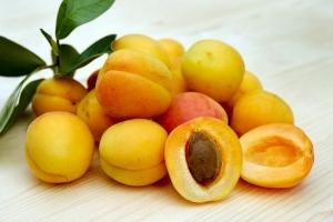 apricots-2523272__340.jpg