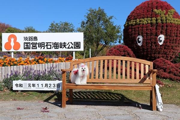 2019.12.09 秋の遠足in淡路島②明石海峡公園③-3
