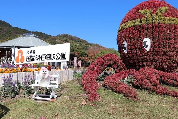 2019.12.09 秋の遠足in淡路島②明石海峡公園③-4