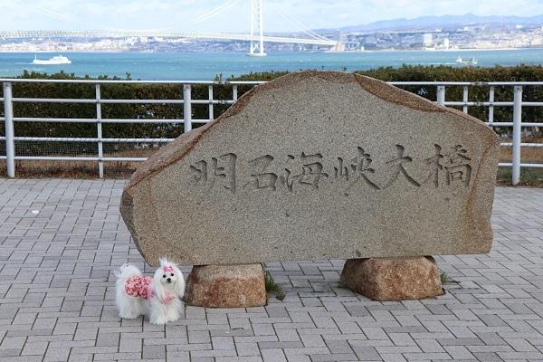 2020.02.16 冬の遠足in淡路島①淡路SA-2