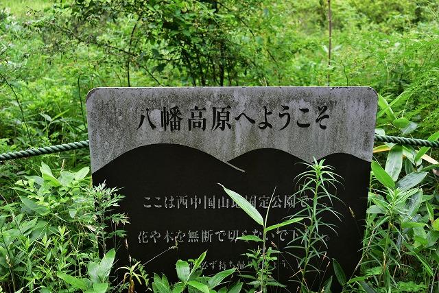 八幡高原2