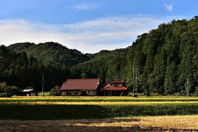 秋の風景3