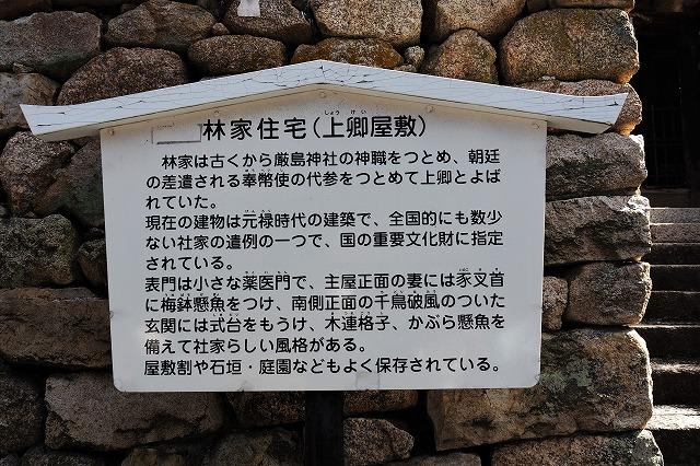 散歩3-12