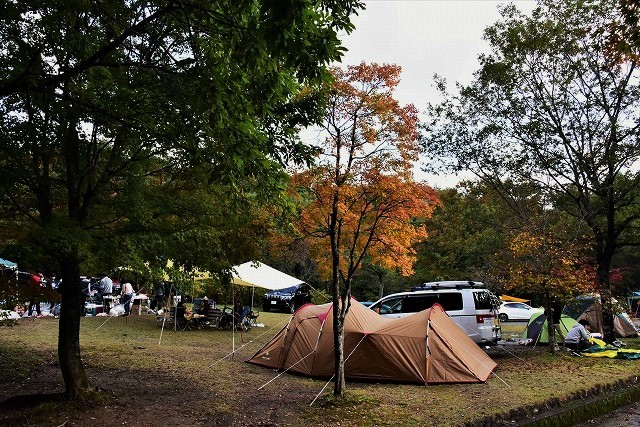 キャンプ場11