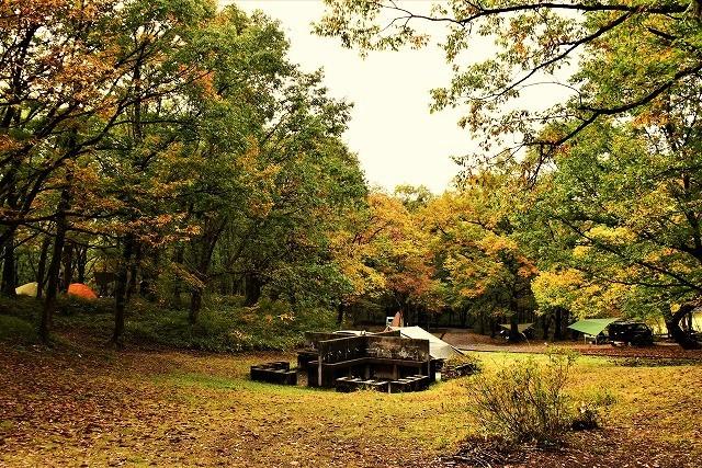 キャンプ場5