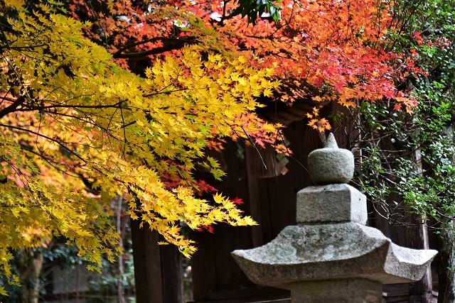 春日神社10