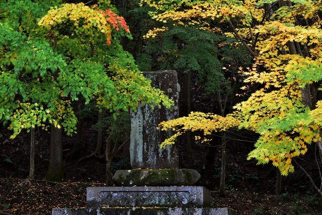 春日神社11