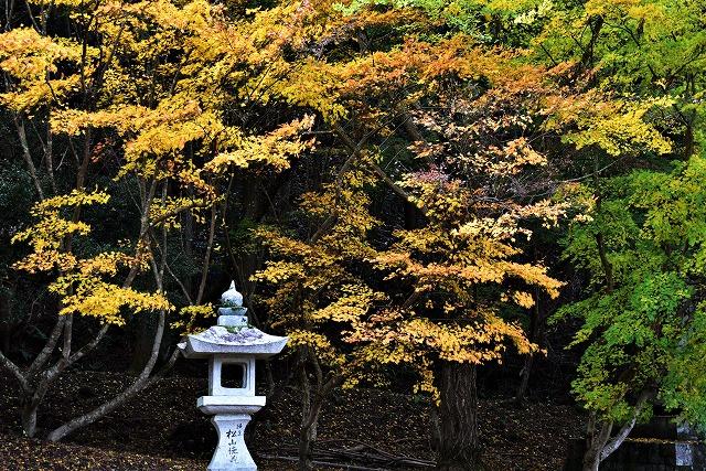 春日神社13
