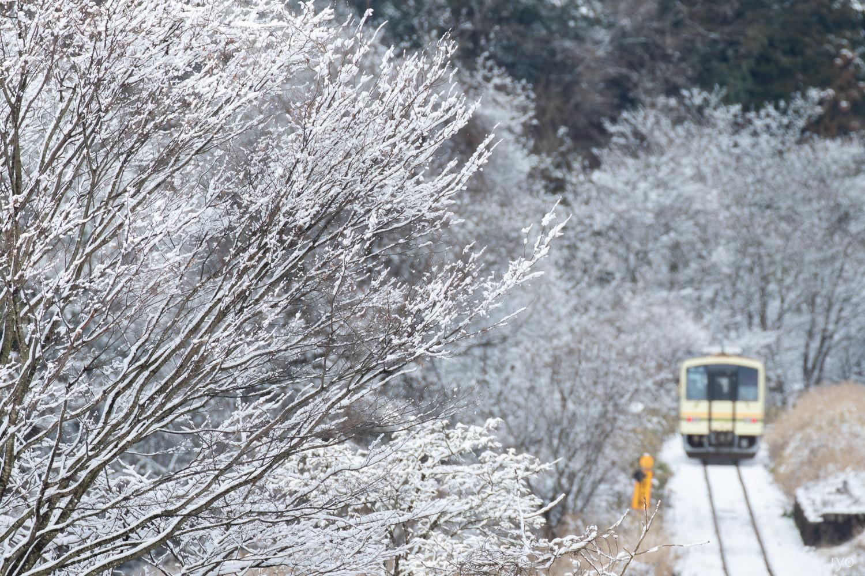 雪の1日_1