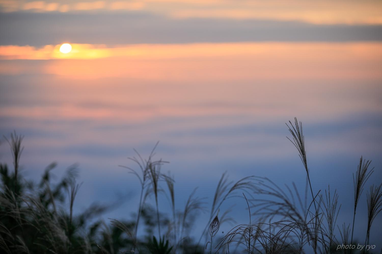 霧の海開き 2019_3