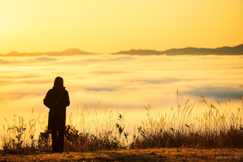 霧の海の季節に Ⅳ_5