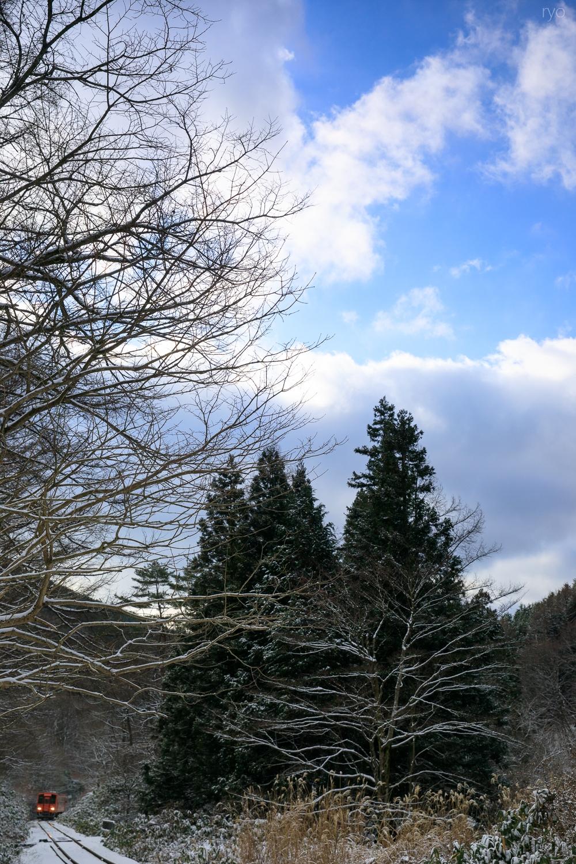 薄っすらの雪の朝に_1