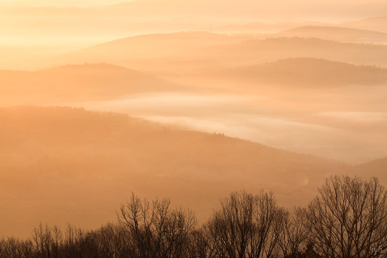 薄い霧の朝に_4
