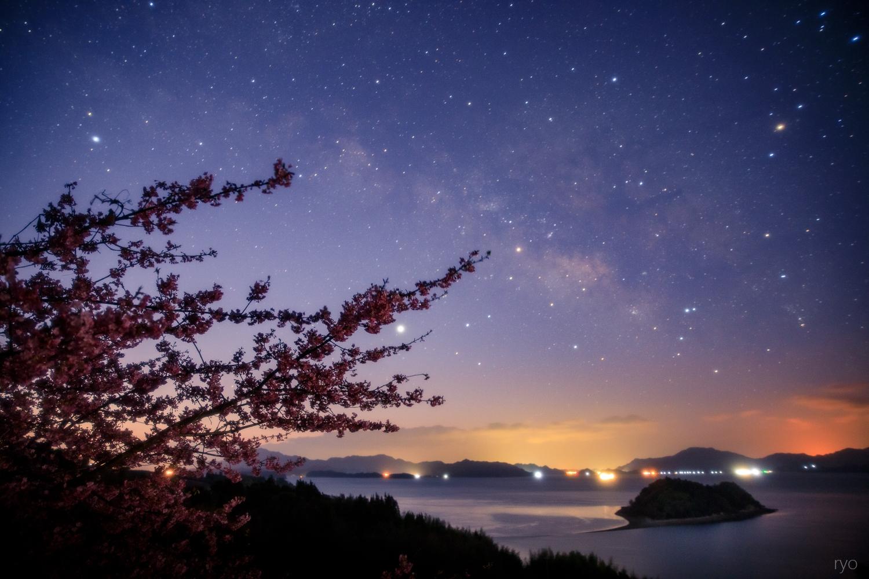 河津桜と_3
