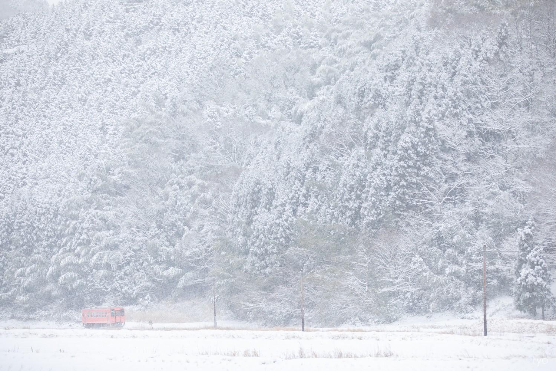 雪の朝_4