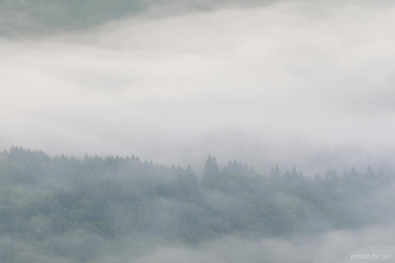 梅雨の晴れ間に_5
