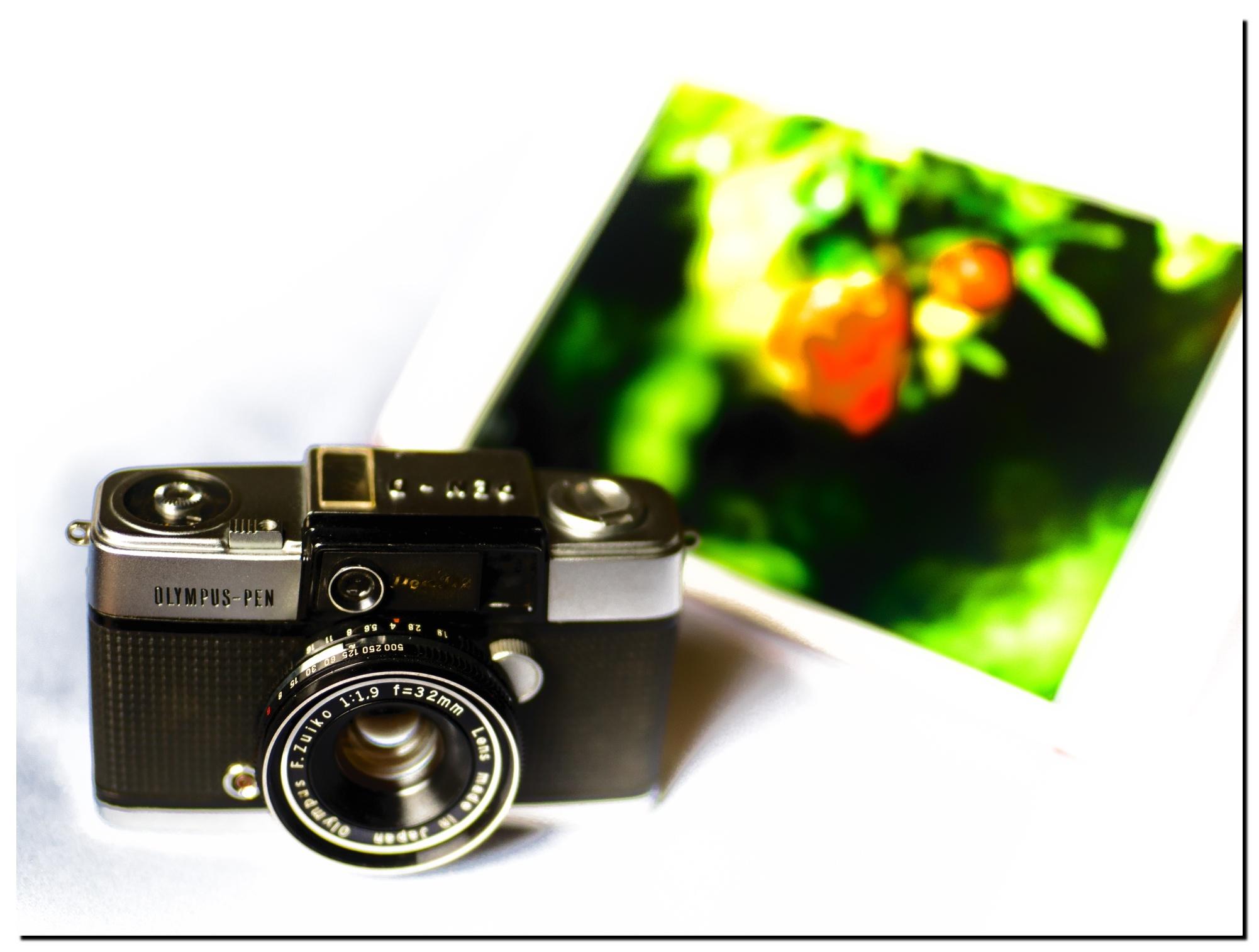 01LR-P7180285-Edit-3.jpg