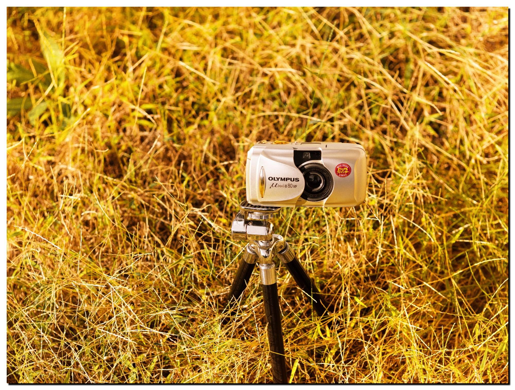 01LR-PF229143-Edit-3.jpg